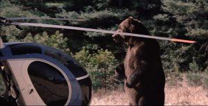 本物の巨大熊が出演!『ジョーズ』便乗企画にして超大ヒットB級パニック『グリズリー』激レア放送(DVD廃盤だぞ!!)