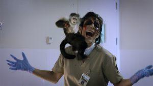 動物園、みーんなゾンビ化! 超低予算CG(一部着ぐるみ)の爆笑動物パニック『ZOOMBIE ズーンビ』
