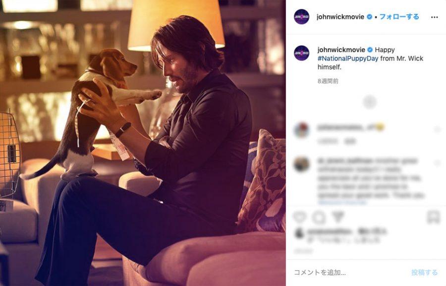 キアヌ主演『ジョン・ウィック』大ヒットに貢献⁉ 愛犬デイジー&作品名の秘話を脚本家が明かす!
