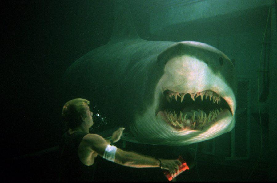 デカい! 頭がいい!! 空を飛ぶ⁉ サメ映画7作放送「サメフェス2020」でこの夏もサメ三昧!